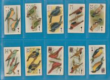 Tobacco cigarette cards Birds of brilliant plumage Playing Cards set